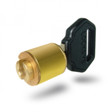 Adaptability to all kinds of locking systems